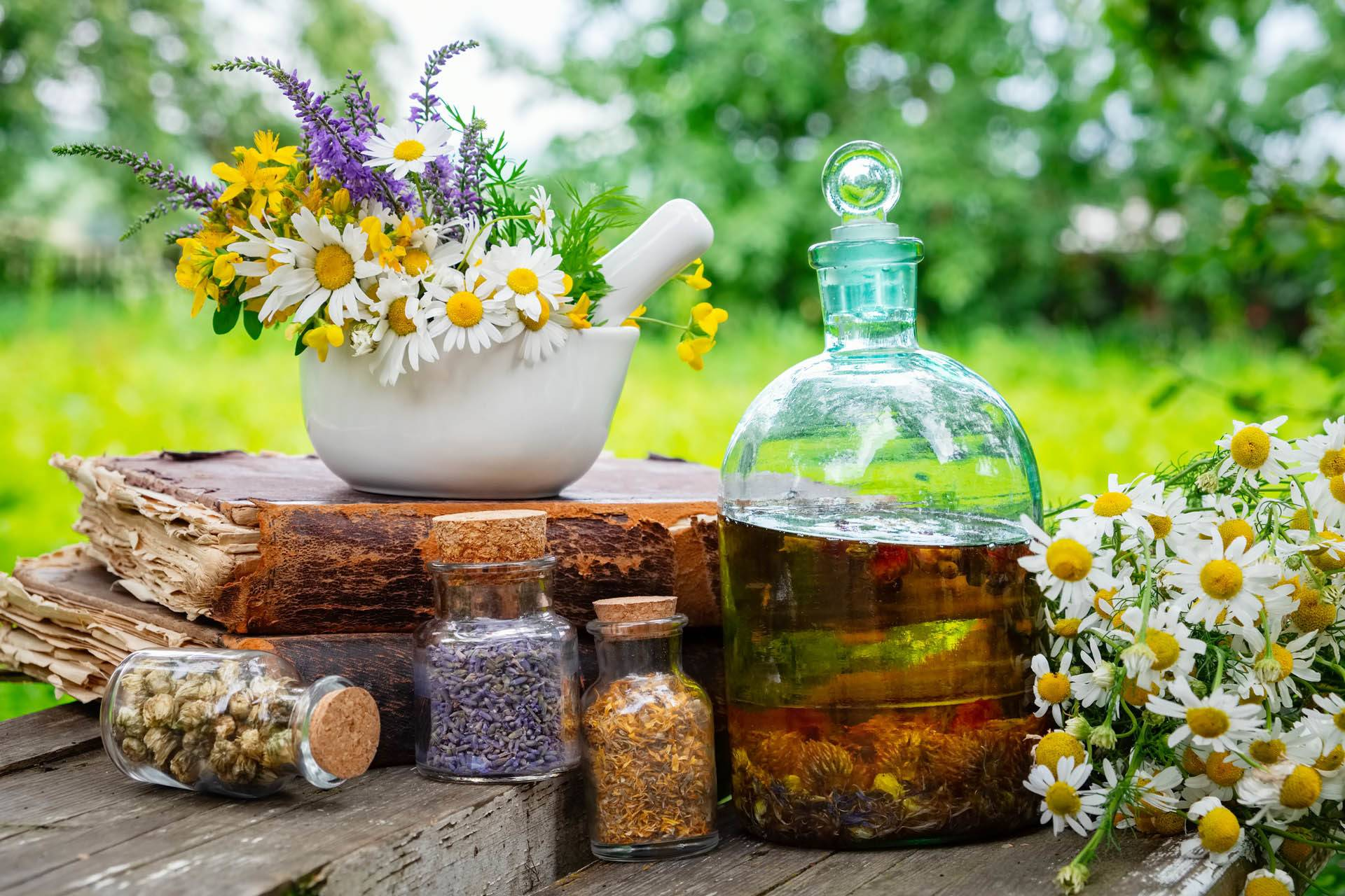 Mortar of healing herbs, bottles of healthy essential oil or inf
